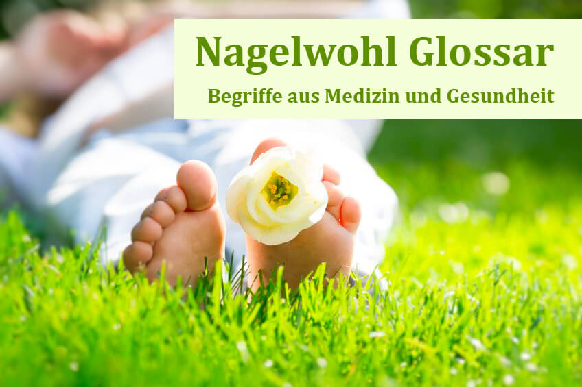 Nagelwohl Glossar